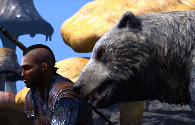 elder-scrolls-online-morrowind-warden-class